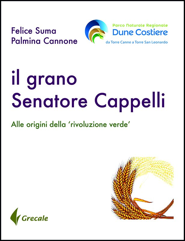 Il grano Senatore Cappelli